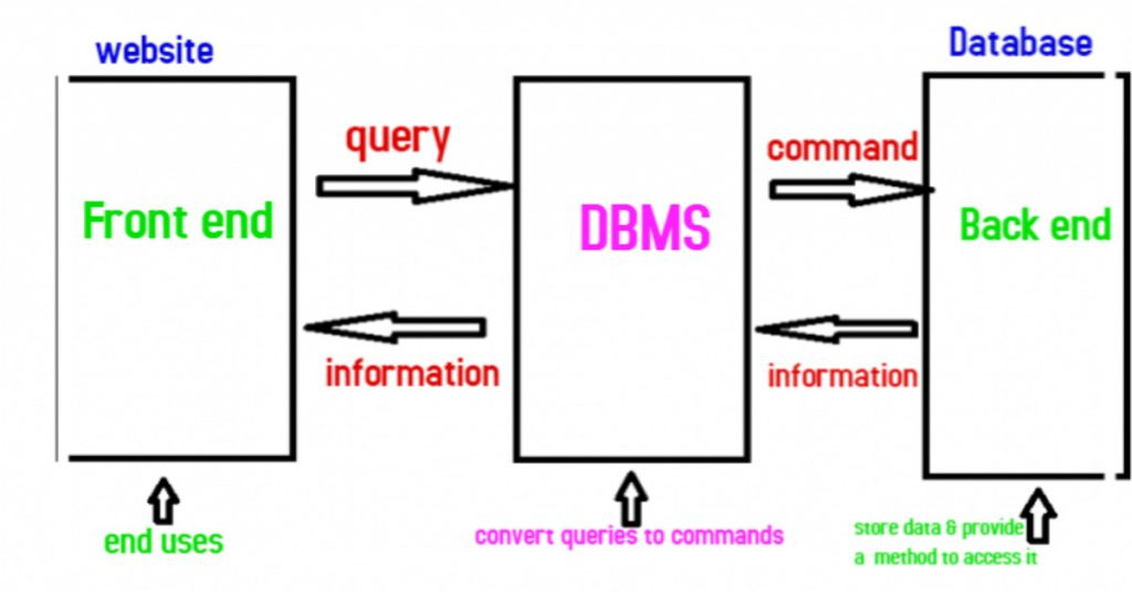 what-is-a-database-management-system
