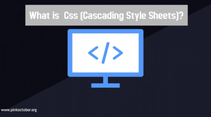 What is CSS?